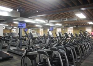 Hone Fitness