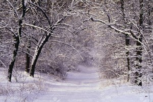 High Park in Winter, Toronto, Ontario, Canada