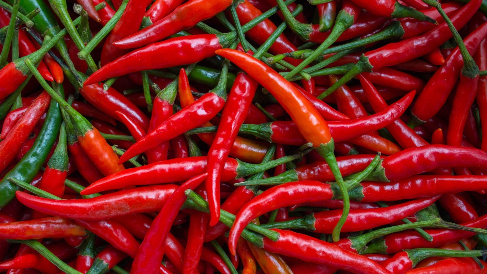 best places to get spicy food toronto